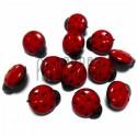 """Набор красно - черных пластиковых декоративных пуговиц """"Божьи коровки"""", 15 x 13 мм., 12 штук, REGINA"""