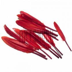 Набор натуральных декоративных перьев, красных, 12 - 15 см., 12 штук, REGINA