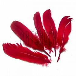 Набор натуральных декоративных перьев, красных, 20 - 23 см., 5 штук, REGINA