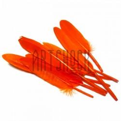 Набор натуральных декоративных перьев, оранжевых, 12 - 15 см., 8 штук, REGINA