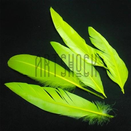 Набор натуральных декоративных перьев, желтых неоновых, 20 - 23 см., 5 штук, REGINA