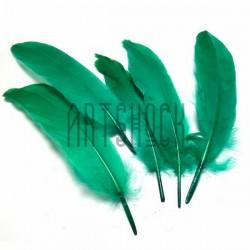 Набор натуральных декоративных перьев, зеленых, 20 - 23 см., 5 штук, REGINA