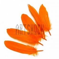 Набор натуральных декоративных перьев, оранжевых, 20 - 23 см., 5 штук, REGINA