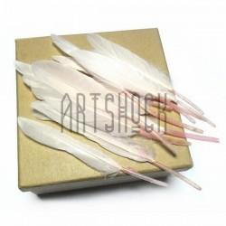 Набор натуральных декоративных перьев, бледно - розовых, 12 - 15 см., 12 штук, REGINA
