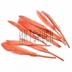 Набор натуральных декоративных перьев, морковных, 12 - 15 см., 12 штук, REGINA
