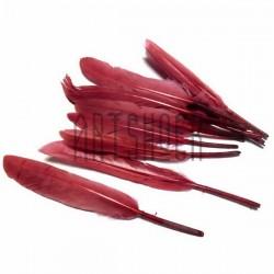 Набор натуральных декоративных перьев, темно - бордовых, 12 - 15 см., 12 штук, REGINA