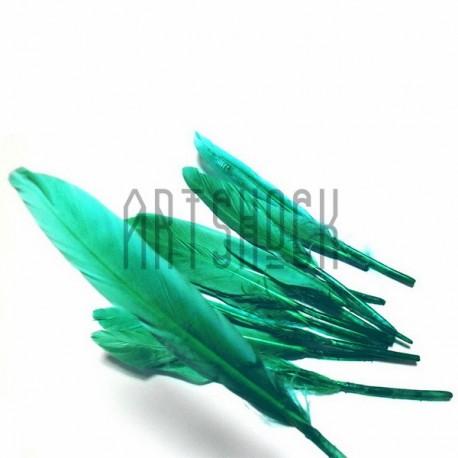 Набор натуральных декоративных перьев, зеленых, 12 - 15 см., 10 штук, REGINA
