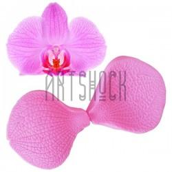 Силиконовый молд 3D (вайнер), лепесток орхидеи Ванды, двухсторонний, 2 части, размер: 6.5 x 5.5 см., толщина 1.4 см., REGINA