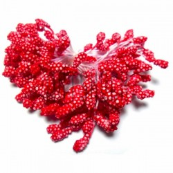 Тычинки для цветов (гроздь), двусторонние, светло-красные, размер 6 мм., длина 6 см., REGINA