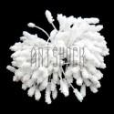 Тычинки для цветов (гроздь), двусторонние, белые, размер 6 мм., длина 6 см., REGINA