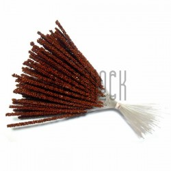 Набор декоративных стеблей, коричневые, 13 - 15 см., 100 штук, REGINA