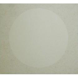 Рисовая бумага в паспарту на картоне, 26.8 х 24.1 см.