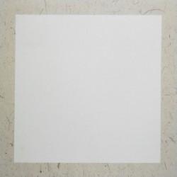 Бумага в паспарту из рисовой бумаги на картоне для китайской живописи и каллиграфии, 33 х 32.7 см. купить в Киеве