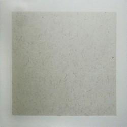Рисовая бумага с волокнами в паспарту из художетвенной бумаги на картоне для китайской живописи, 33 х 32.7 см.